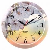 Часы настенные, диаметр 290мм, стекло минеральное, полноцветная печать на пластике., арт. 11000004, арт. 11000009